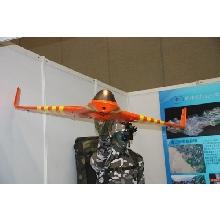 """LongFengⅠ"" UAV System"